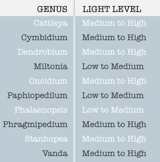 Common Genus Light Levels